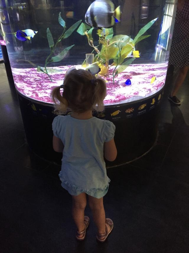 akvariumet på Coex senteret.jpg